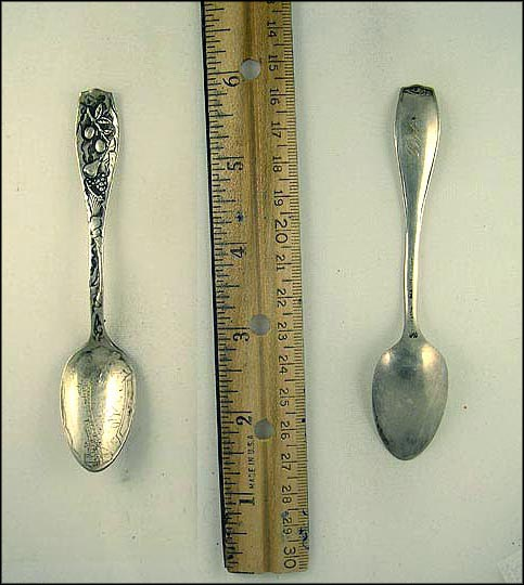 Train and Fruit Souvenir Spoon