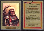 Chief Red Cloud by Gregory Perillo; 1 g 999.9 Gold