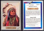 Chief Sitting Bull by Gregory Perillo' Art Bar. THUMBNAIL