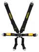 SCHROTH Enduro 6-Point Harness