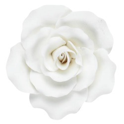 Gum Paste Rose - Large White LARGE
