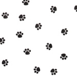 Cello Bags - 1 pound Paw Print THUMBNAIL