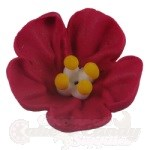 Royal Icing Petunias - Red