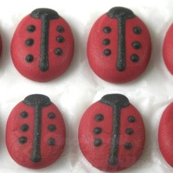 Royal Icing Lady Bugs LARGE