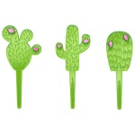 Cactus Assortment Decopics