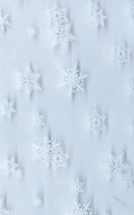 Cello Bags - 1 Pound Snowflake