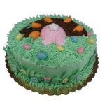 Cake Decorating for Kids - Bunny Tail Cake - March 30, 2018
