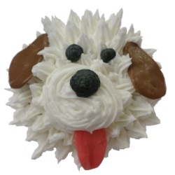 Animal Cupcakes for Kids - TBA LARGE
