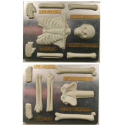 Large 2 Piece Skeleton Mold LARGE