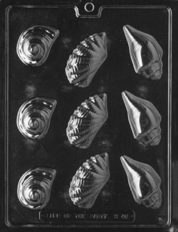 Assorted Shells Chocolate Mold