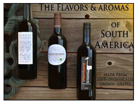 <b>South American Flavors 3-pack</b>