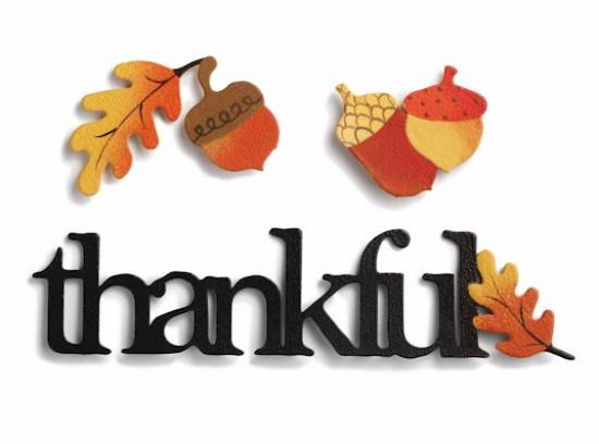 Thankful Magnet Set