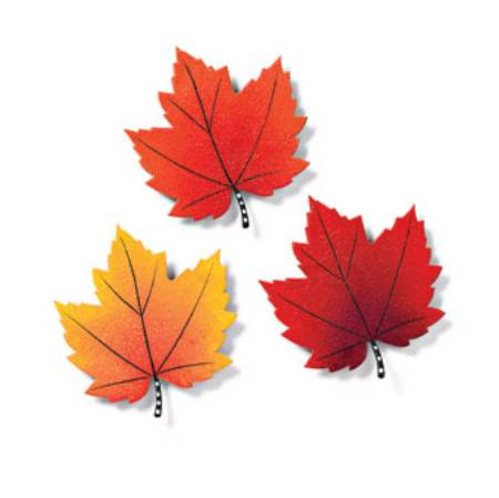 Maple Leaf Magnets
