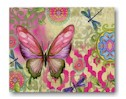 Flight Assorted  Boxed Note Cards Mini-Thumbnail