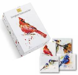 Songbird Notecard Set