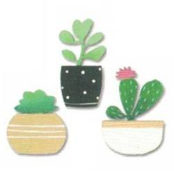 Succulents Magnets THUMBNAIL