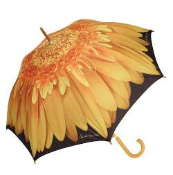 Yellow Gerbera Umbrella