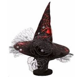 Witch Hat with Red Spider Web