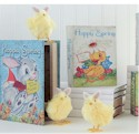 Duck Book Box_SWATCH