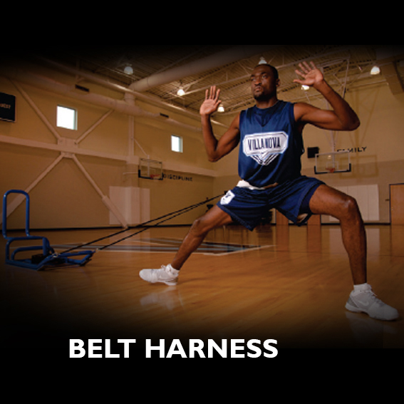 Belt Harness THUMBNAIL