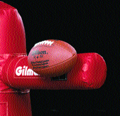 Double Velcro Football - velcro wilson football_LARGE