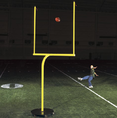 Miniature Goal Post