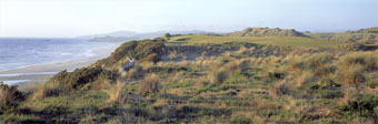 Bandon Dunes 6 by Drickey