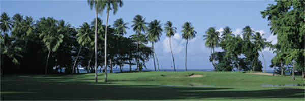 Dorado Beach 13th by Drickey