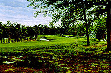 Pinehurst 5th by Chorley  THUMBNAIL