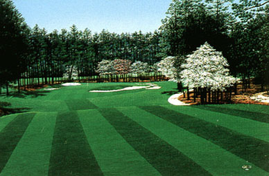 Pinehurst #2 17th by Griff