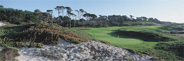 Spyglass Hills 4th by Drickey