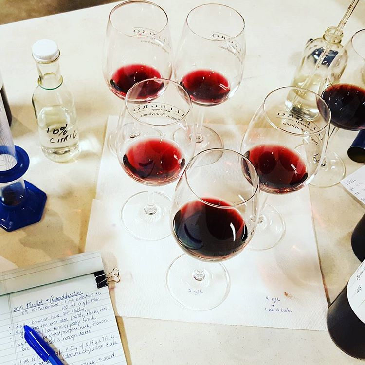 Blending Experience - CLUB_LARGE