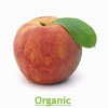 Organic Princess Time Yellow Peach, ea.