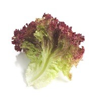 Organic Red Leaf Lettuce, ea.