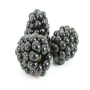 Organic Blackberry, 6oz._LARGE
