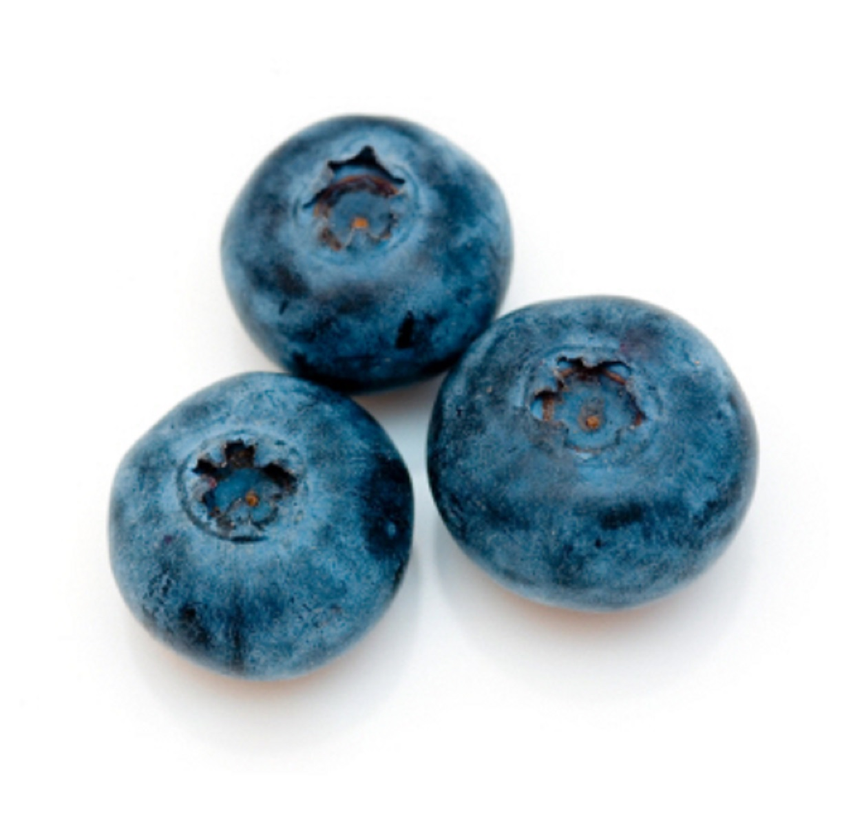 Organic Blueberry, 4.4oz.