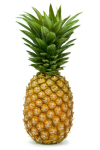 Organic Golden Pineapple, ea._THUMBNAIL