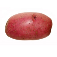 Organic Red Potato, 1lb Bag.