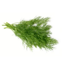 Dill Bunch, ea.