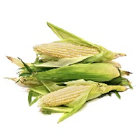 California Sweet Corn (Ear)
