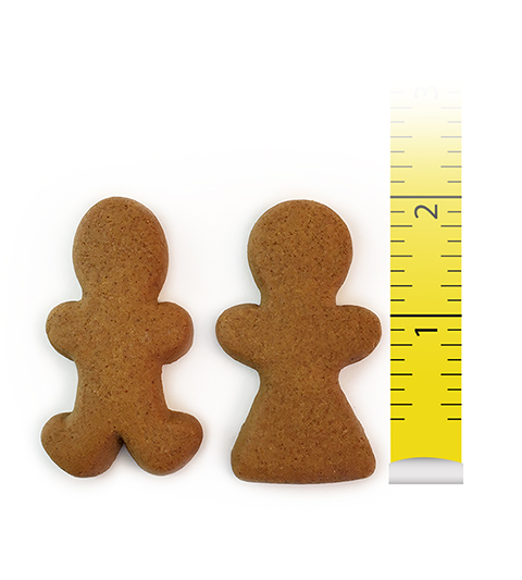 "Gingerbread Cookie 2"" Boy and Girl"