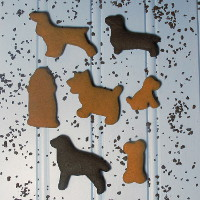 Fun Pak - Gingerbread Dog
