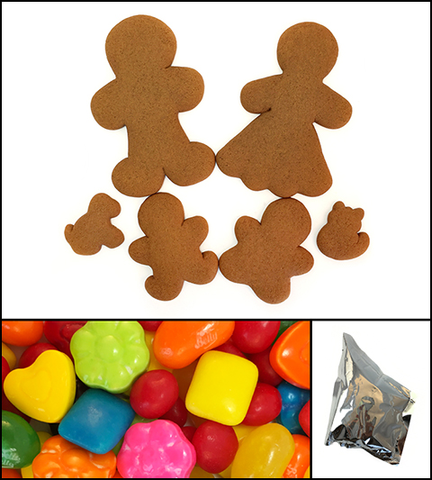 Gingerbread Cookie Family Kit MAIN
