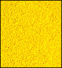 Sprinkles (Yellow) THUMBNAIL
