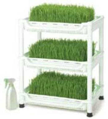 Sproutman's Soil Free Wheatgrass Sprouter