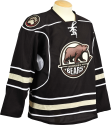 Bears Youth Jersey Away Replica THUMBNAIL