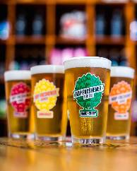 Set of The Hop Concept Hop Freshener 16oz Pint Glasses_THUMBNAIL