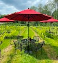 Wine Club Sept. Pick-Up Party - Vineyard Seating MAIN