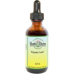Papaya|Tinctures-Liquid Herbal Extracts & Herbal Benefits LARGE