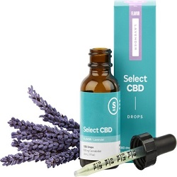 CBD Oil Lavender|Tinctures-Liquid Herbal Extracts & Their Benefits